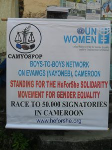 Introducing the BOYS-TO-BOYS Strategy in Cameroon