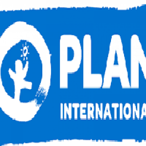 Capacity Building of Savings Groups on: Strengthening the Reproductive Health and Sexual Life Skills of Youths and Women. CAMYOSFOP consultancy with Plan International Cameroon, June 2018.